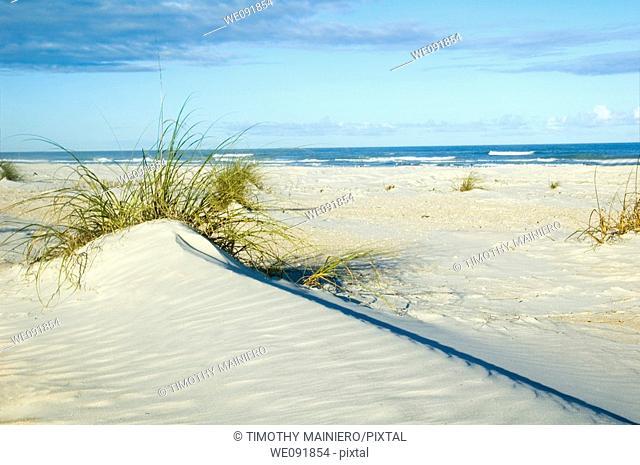 Beautiful sand dune near ocean strong diagonal line