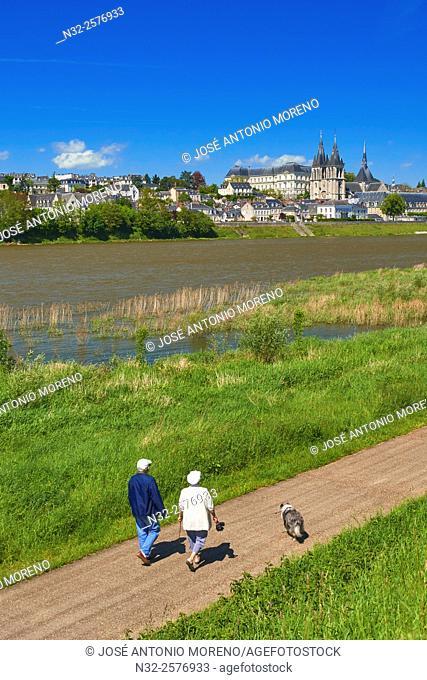 Blois, Saint Nicolas, Loire River, Loire et Cher, Pays de la Loire, Loire Valley, UNESCO World Heritage Site, France