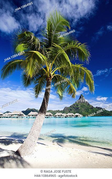 Tahiti, Society Islands, Bora Bora Island, Huts, the Lagoon and Mount Pahia