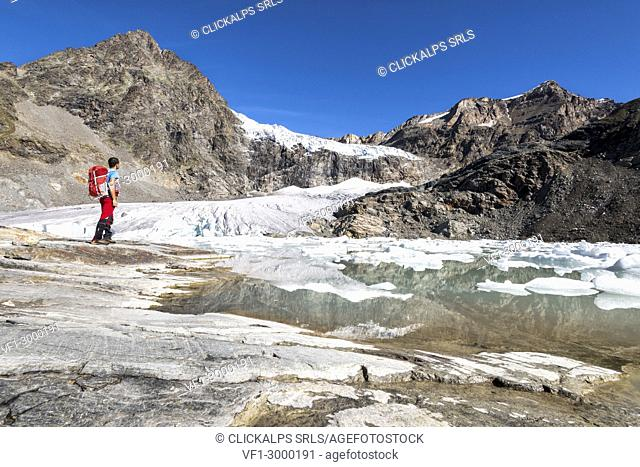 Hiker looking the Fellaria Glacier, during the summer, Malenco Valley, Province of Sondrio, Valtellina, Lombardy, Italy Europe