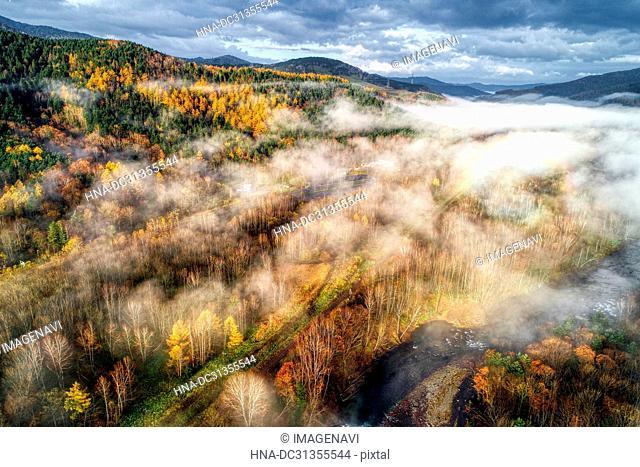 Sea of Clouds Autumn Foliage