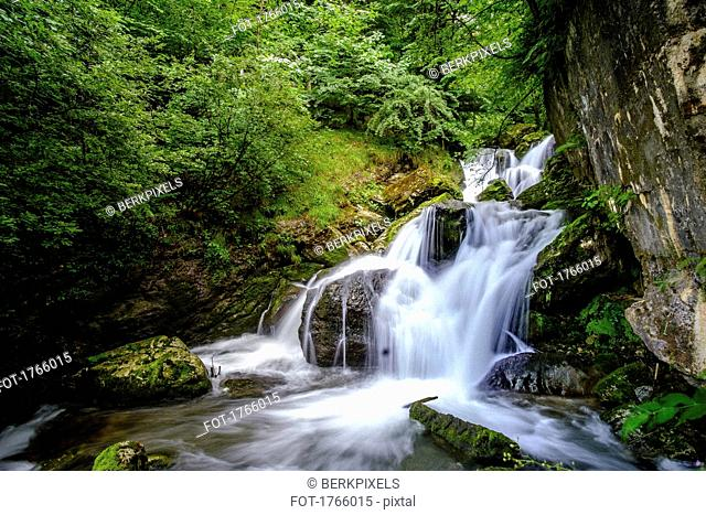 Tranquil forest waterfall, Ybbsitz, Austria