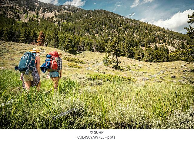 Rear view of teenage girl and young female hiker hiking up mountain, Red Lodge, Montana, USA