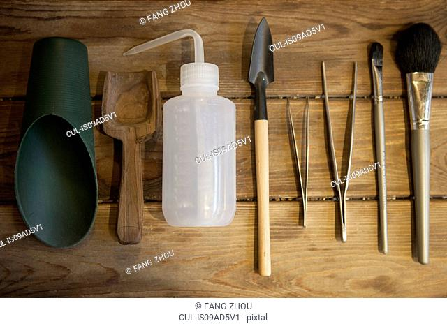 Still life of gardening tools