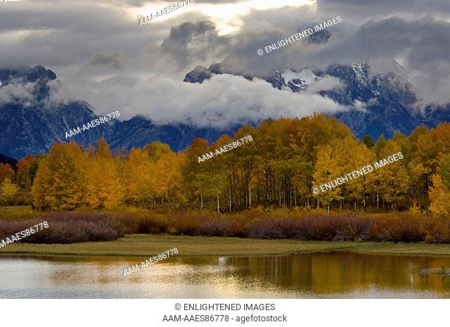 Aspen trees and fall storm clouds over Mount Moran, at Oxbow Bend, Snake River, snake river, Grand Teton National Park, Wyoming
