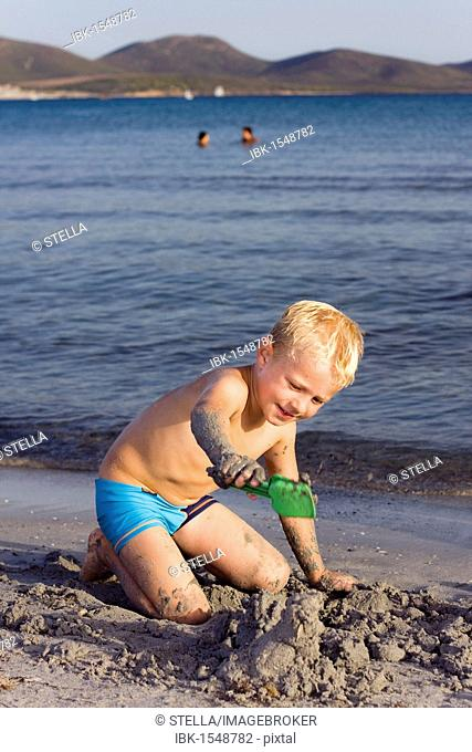 Boy, 5 years, on a sandy beach, digging in the sand