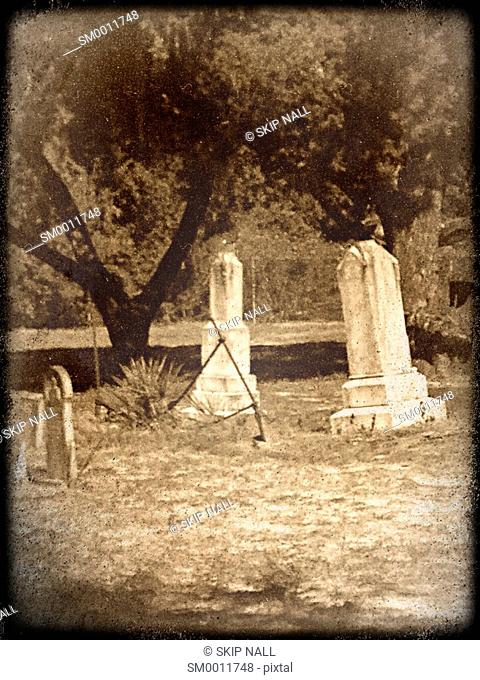Tombstones in a deserted cemetery
