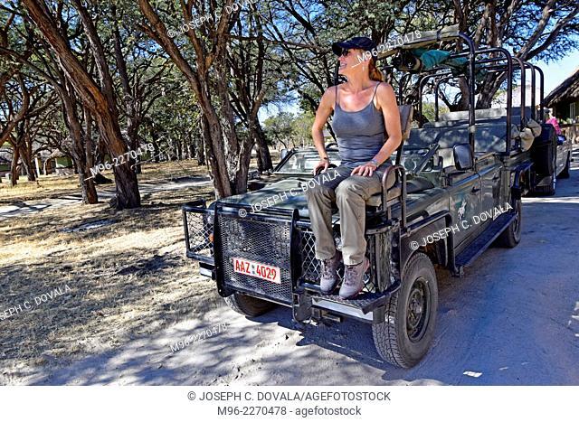 Woman tourist sitting on hood seat of safari truck, Hwange, Zimbabwe, Africa
