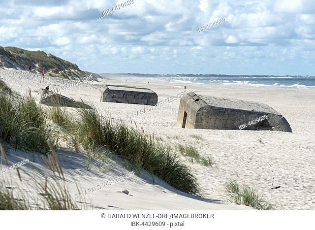 Bunkers sunken into the sand, The Atlantic Wall by the German Wehrmacht, Nørre Nebel, Jutland, North Sea, Denmark