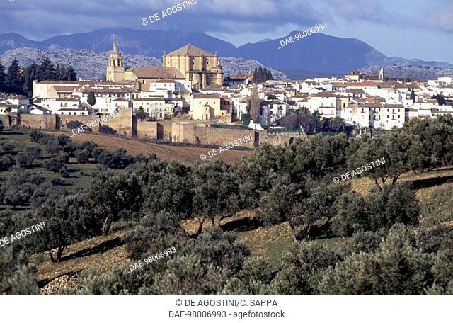 View of Ronda with its walls and the Church of St Mary the Greater, Andalusia, Spain