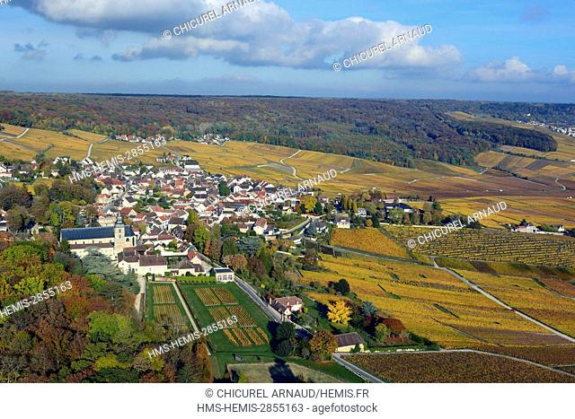 France, Marne, hillsides of Champagne listed as World Heritage by UNESCO, Hautvillers and the vineyard during fall (aerial view)