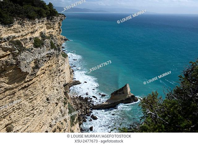 Breña y Marismas de Barbate park is Andalucia's second largest coastal reserve and has one of the most spectacular stretches of rocky cliffs along the...