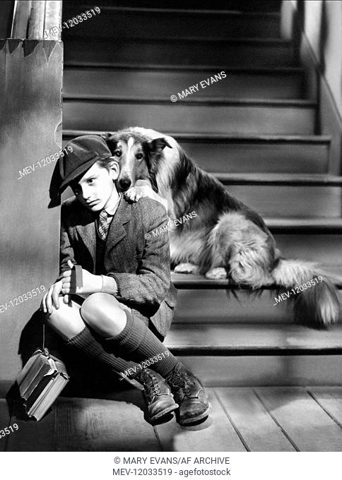 Roddy Mcdowall & Lassie Characters: Joe Carraclough Film: Lassie Come Home (1947) Director: Fred M. Wilcox 01 April 1943