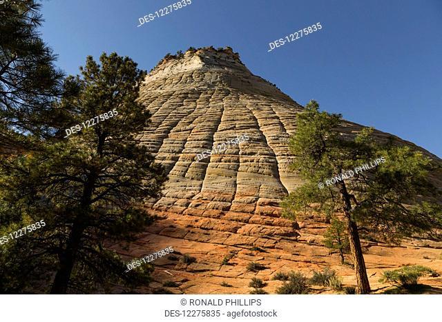Checkerboard Mesa, Zion National Park; Utah, United States of America