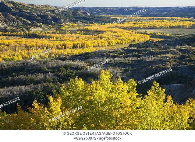 Badlands view above Little Missouri River, Theodore Roosevelt National Park-North Unit, North Dakota