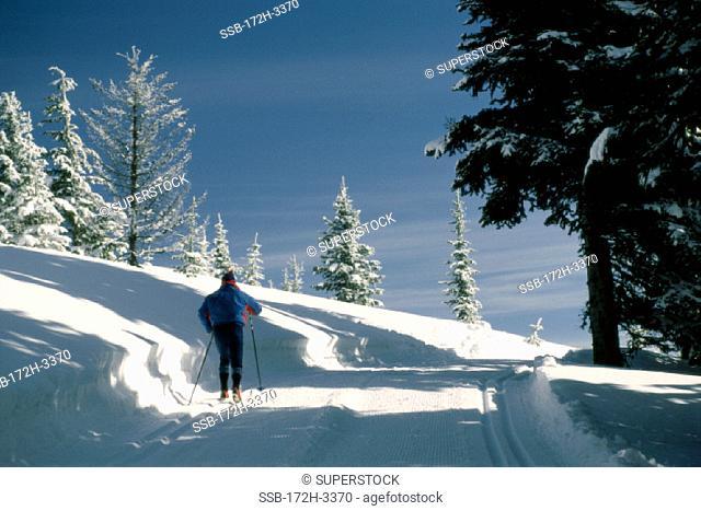Mount Spokane State Park Washington USA