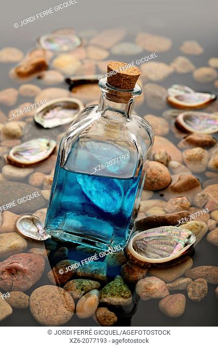 blue liquid in a glass bottle on water with seashells and stones