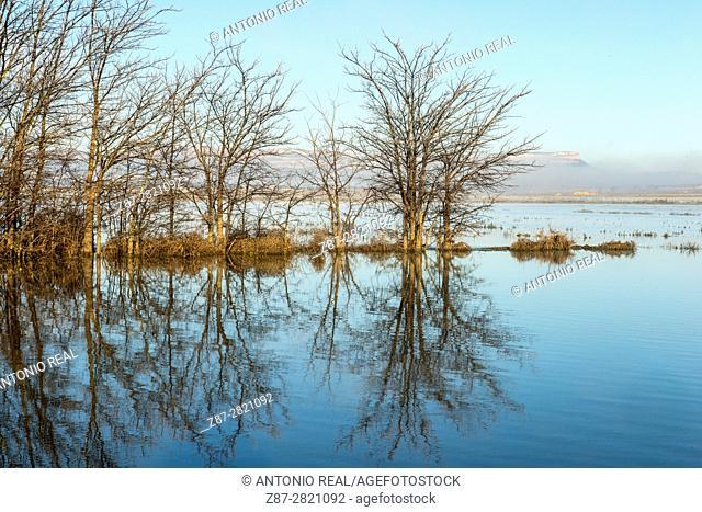 Sierra del Mugrón and flooded farmlands. Almansa. Albacete province. Spain