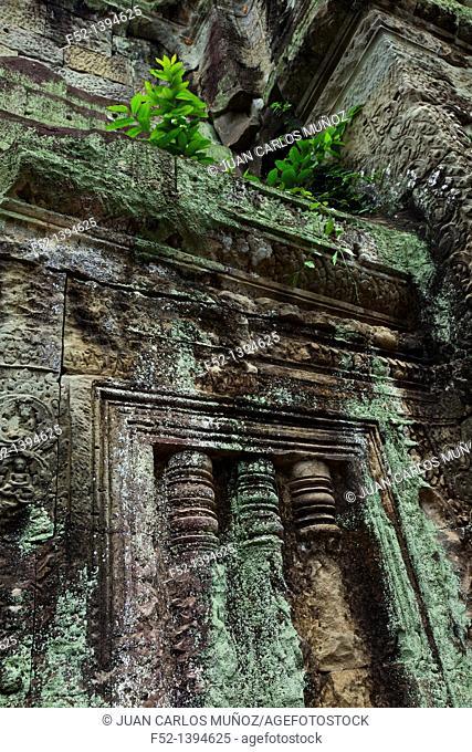 Preah Khan Temple  Angkor  Siem Reap town, Siem Reap province  Cambodia, Asia