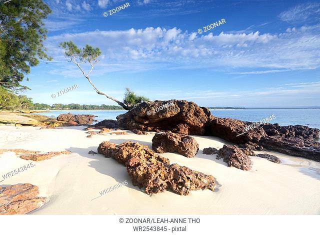 Tree on a Rock, Jervis Bay