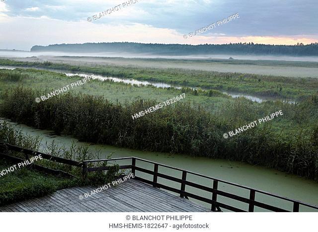 Poland, Podlaskie, Ploski, birds village, terrace of tourism center Ptasia Osada with views of the Narew river