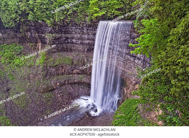 Tews Falls on Logies Creek in the Spencer Gorge Wilderness Area along the Niagara Escarpment near Hamilton, Ontario, Canada
