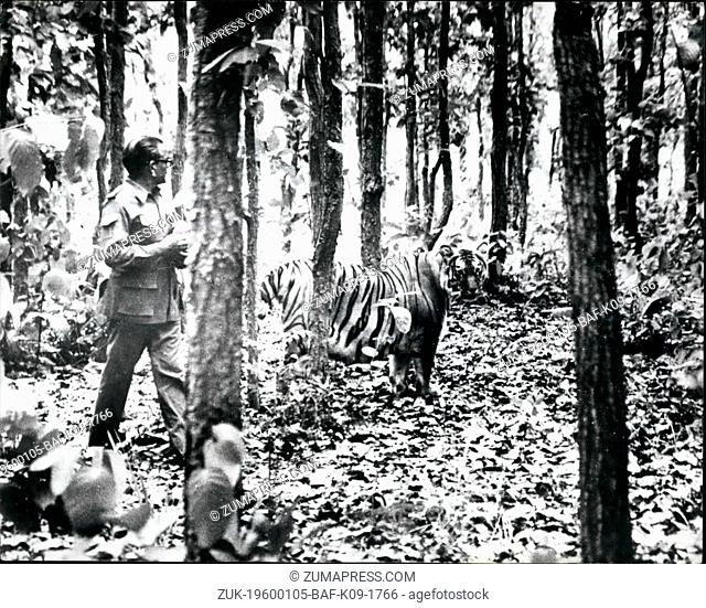 1968 - Hold That Tiger!: If you're worried about burglars, how about this for a watch dog with a difference? In a small village in India this striped beauty has...