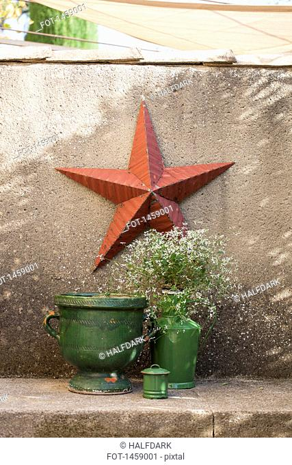 Urn and potted plant against star mounted on wall