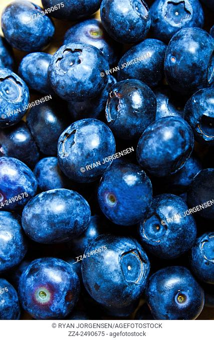 Bright and delicious freshly picked blueberries closeup. Healthy eating background with copyspace