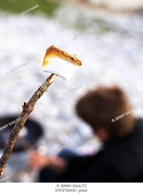 A marshmallow on the end of a stick Faro Gotland Sweden