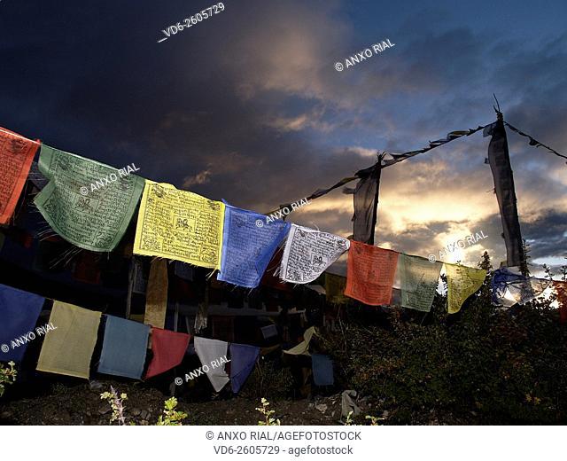 Nepal. Himalayas. Annapurna Circuit. Thorong La Pass (5,416 m) . Flags prayer