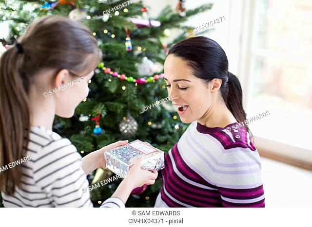 Daughter surprising mother with Christmas gift