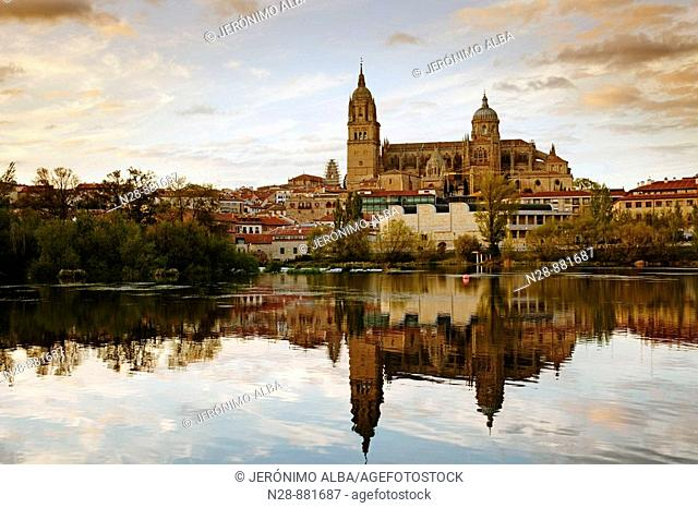 Tormes river and cathedral, Salamanca. Castilla-Leon, Spain