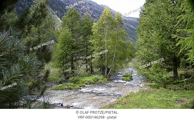 Small river shire in a spring landscape near Pontresina, Switzerland