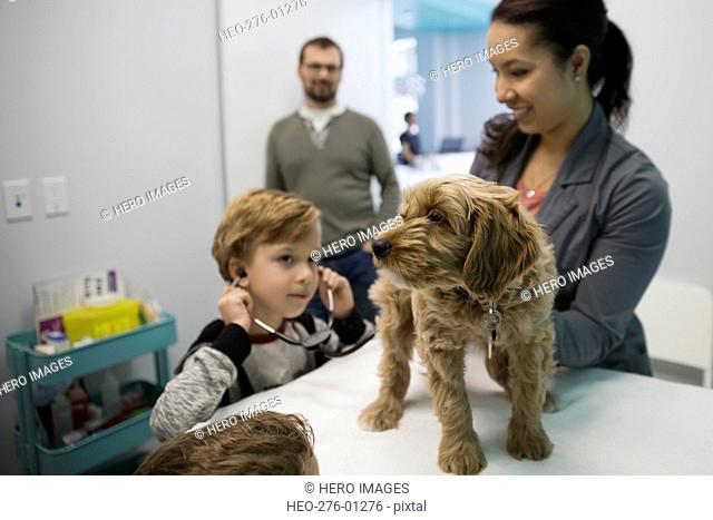 Veterinarian and boy with stethoscope examining dog