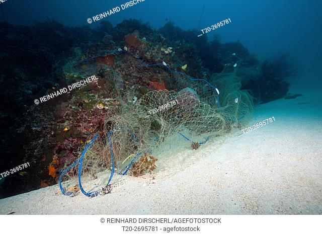 Lost Fishing Net covers Coral Reef, Indo Pacific, Indonesia