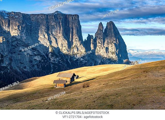 Europe, Italy, South Tyrol, Alpe di Siusi - Seiser Alm. Traditional mountain huts on the Alpe di Siusi meadows, in the background the Sciliar, Dolomites