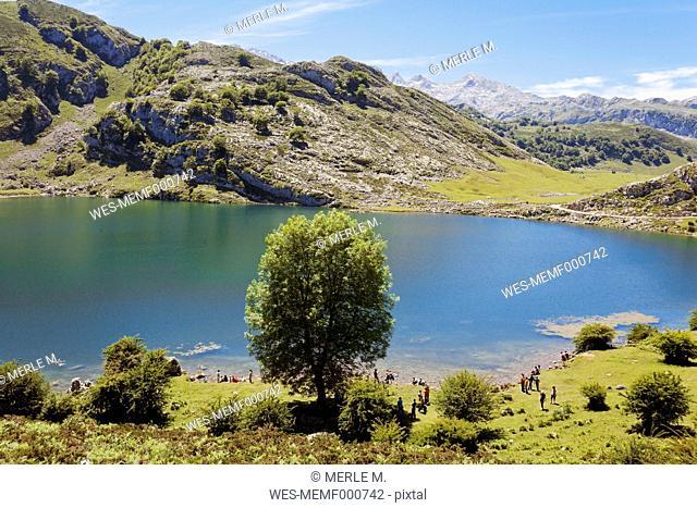 Spain, Asturias, Lago Enol, Mountain lake in the area of Picos de Europa