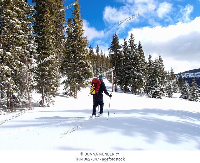 Mike Vining backcountry skiing Wolf Creek Nordic Area Colorado USA