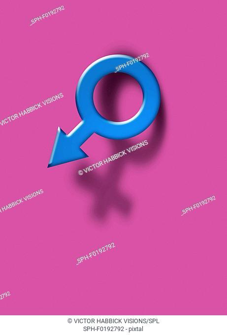 Female and male symbols, illustration