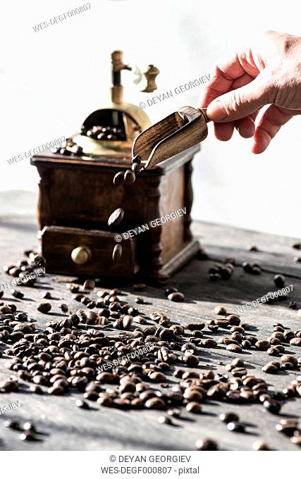 Grinding coffee with vintage coffee mill