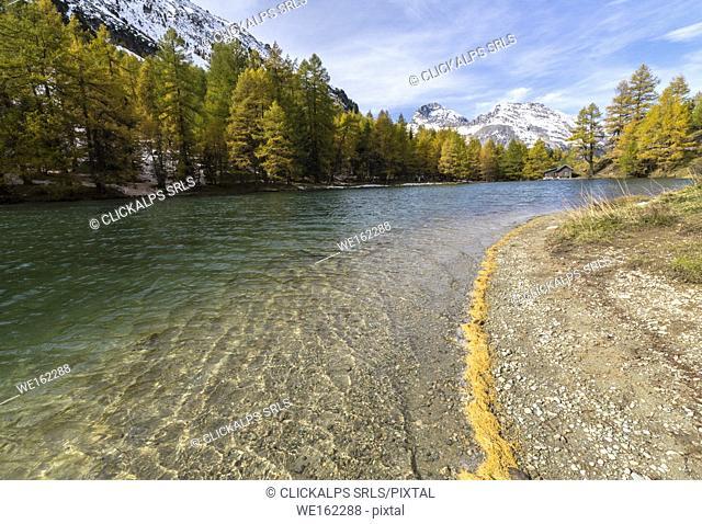 Lai da Palpuogna (Palpuognasee) during autumn, Bergün, Albula Pass, canton of Grisons, Switzerland