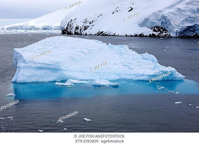 blue ice wedge iceberg floating through the lemaire channel Antarctica