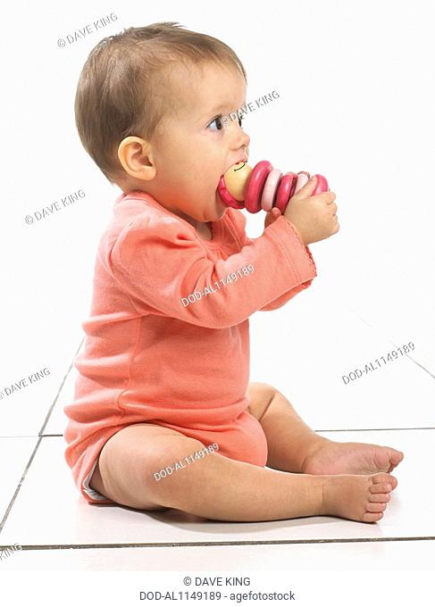 Baby girl (8 months) with toy in mouth