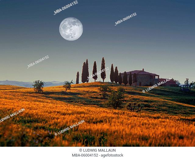Italy, Tuscany, farm near Pienza