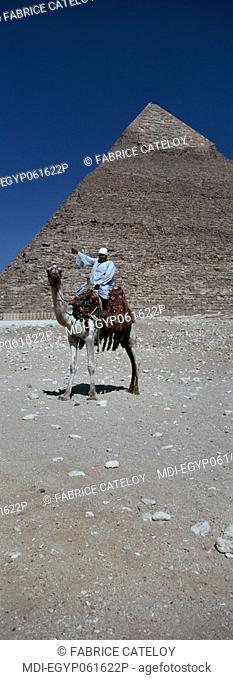 Egyptian on a camel in front of the Khephren pyramid