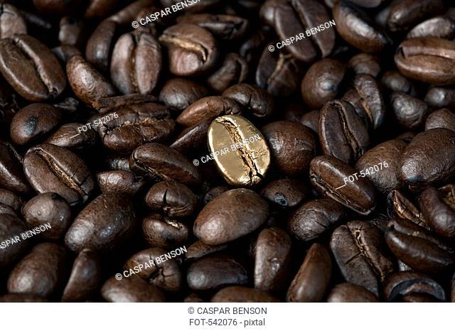 A gold coffee bean