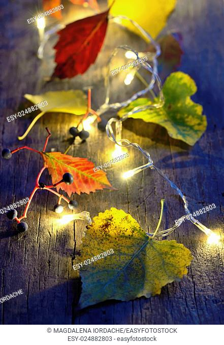 Autumn leaves on wooden board and christmas lights glowing