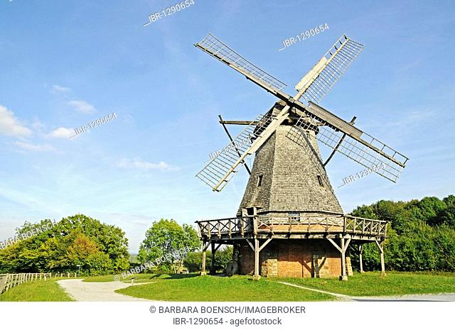 Dutch-style windmill, open-air museum, Westphalian State Museum for Ethnology, Detmold, North Rhine-Westphalia, Germany, Europe