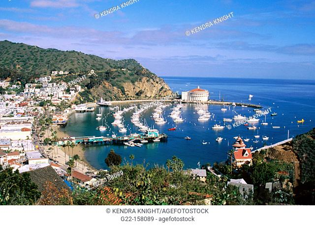 Avalon. Santa Catalina island. California. USA